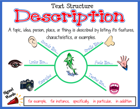 Text Structure Lesson Ms Rs Class